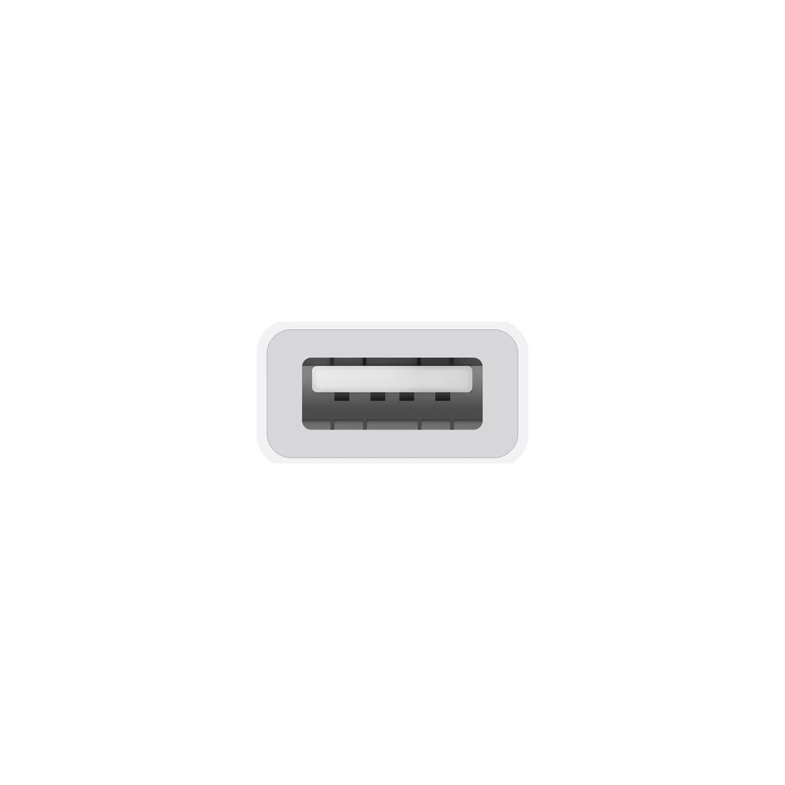 Picture of Apple USB-C to USB Adapter